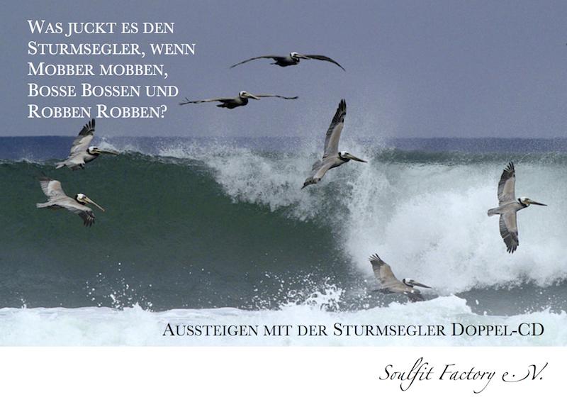 Postkarte Sturmsegler-CD
